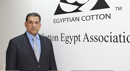 Cotton Egypt Association unveils new brand identity